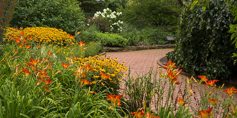 Landscape Garden Summer