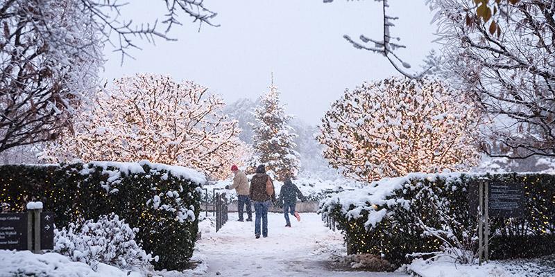 Heritage Winter