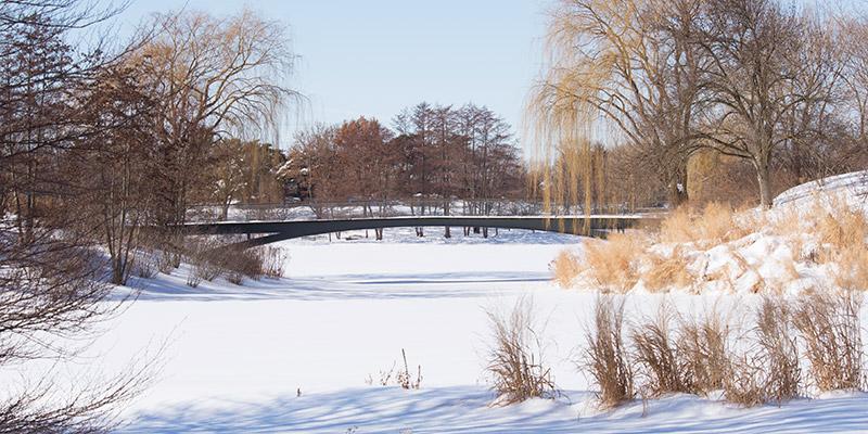 Lakeside Gardens Winter
