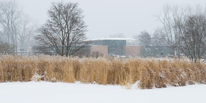 Plant Science Center Winter
