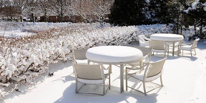 Rose Garden Winter