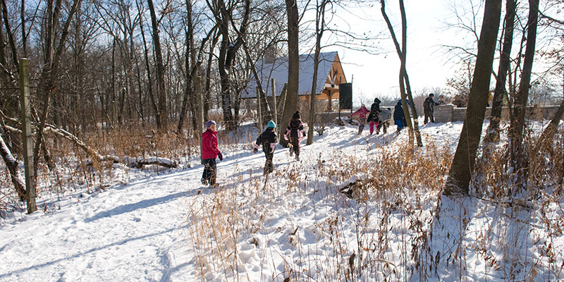 McDonald Woods Winter