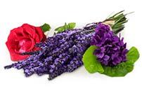 Tru Blooms Fragrance Event