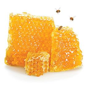 A block of honeycomb