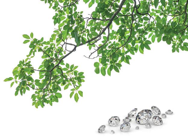 Tree leaves and diamonds