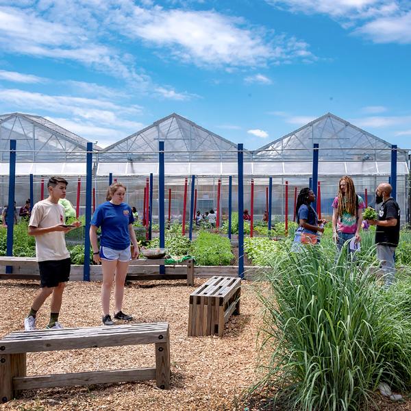 Windy City Harvest Farm Tours