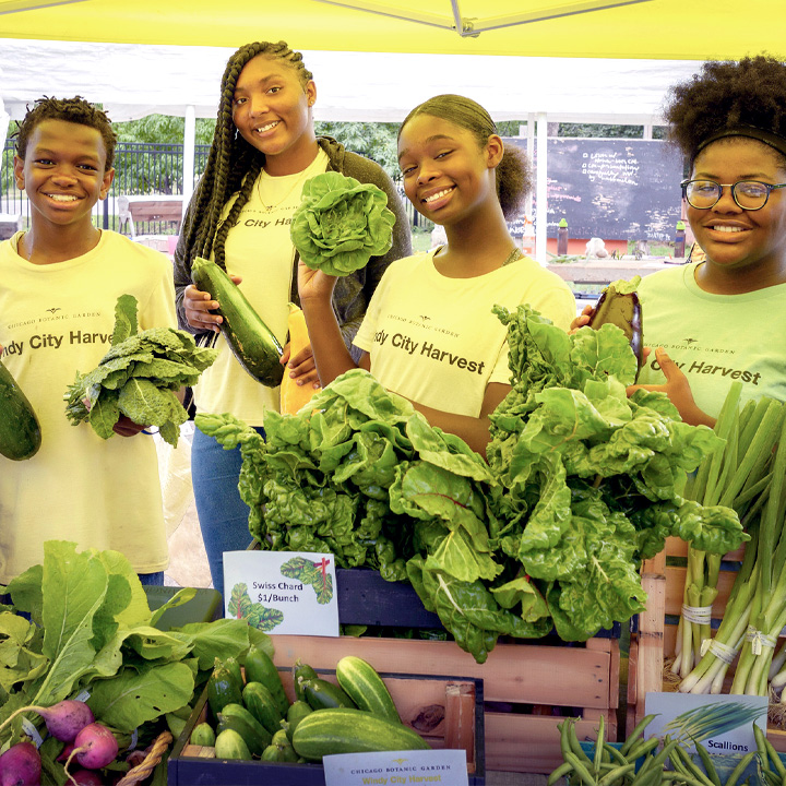 Windy City Harvest Youth Farm