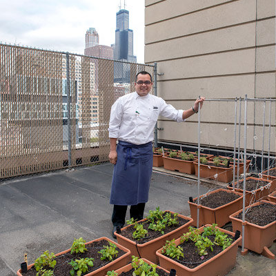 Hilton Chicago Rooftop Farm