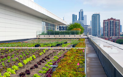 McCormick Place Roof Garden
