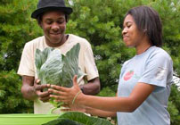 Windy City Harvest Youth Farm