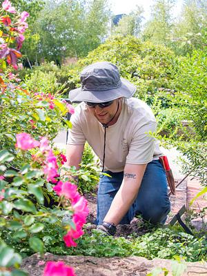 ... Chicago Botanic Garden Departments: Veteran Internship Program