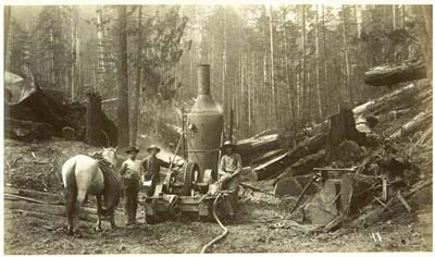 PHOTO: Logging with Donkey Engine