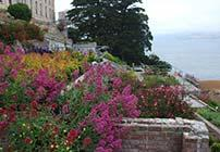 Gardens of Alcatraz