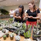 Cactus & Succulent Society of Greater Chicago Show & Sale