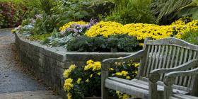 Sensory Garden