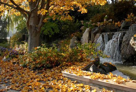 October General Garden Care
