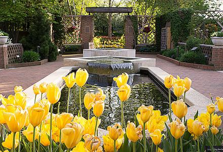 Enabling Garden in spring