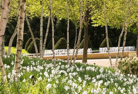 Esplanade in spring