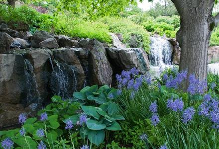 Waterfall Garden in spring