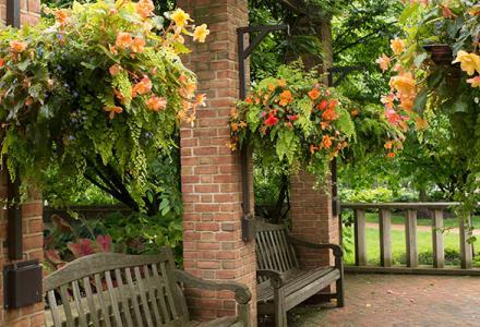Enabling Garden in summer