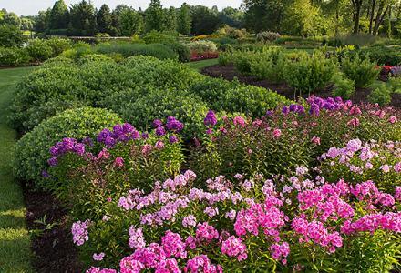 Plant Evaluation Garden in summer