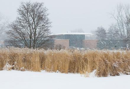 Plant Science Center Winter