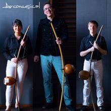 Arcomusical