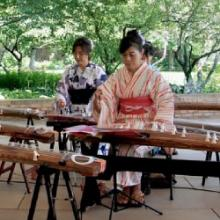 Chicago Koto Group