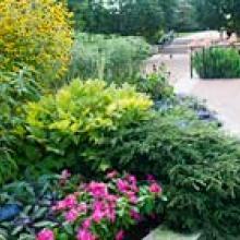 PHOTO: Heritage Garden