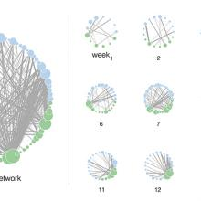 Temporal Dynamics in Pollination Networks