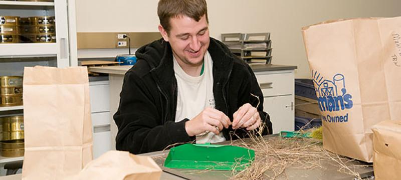 Scientist in seed lab