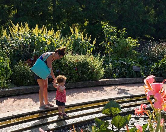 Garden Value Discounts Chicago Botanic Garden