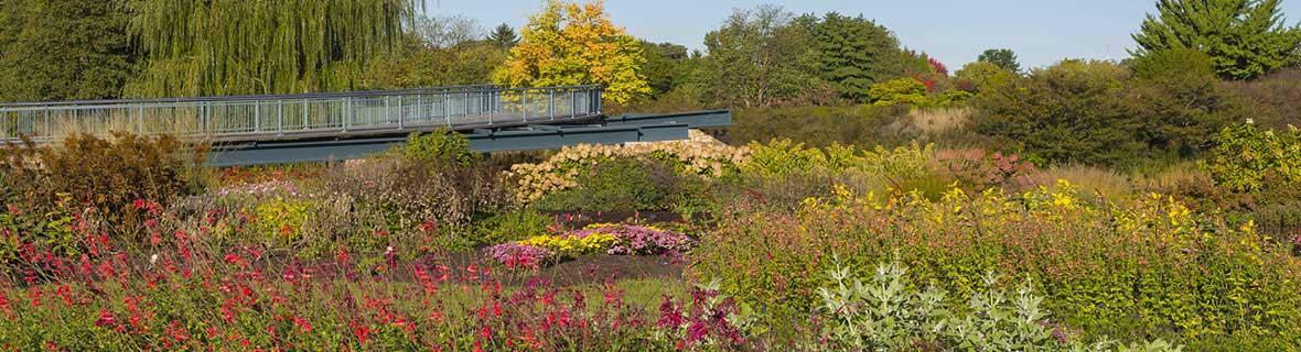 Plant Evaluation Garden