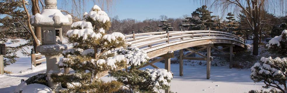 Group Visits at the Chicago Botanic Garden