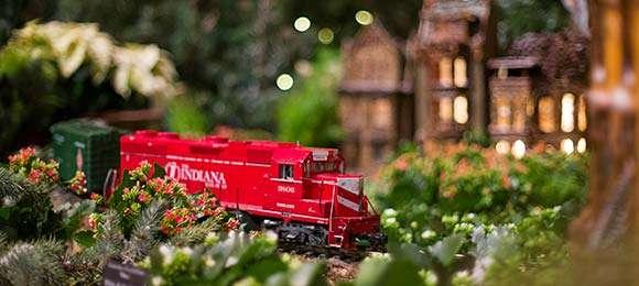 Wonderland Express