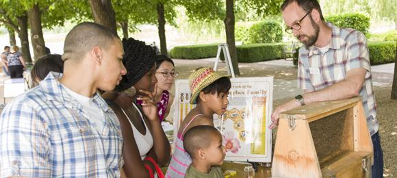 Learn about beekeeping on the Esplanade!