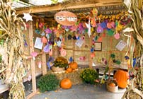 PHOTO: Sukkah Display